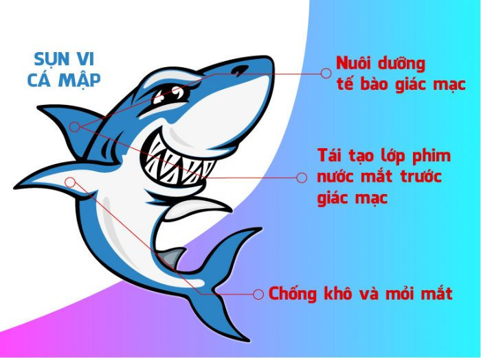 Sụn vi cá mập Orihiro Squalene 360 viên