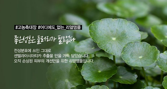 Nước Hoa Hồng Trị Mụn Skin1004 Madagascar Centella Asiatica Toning