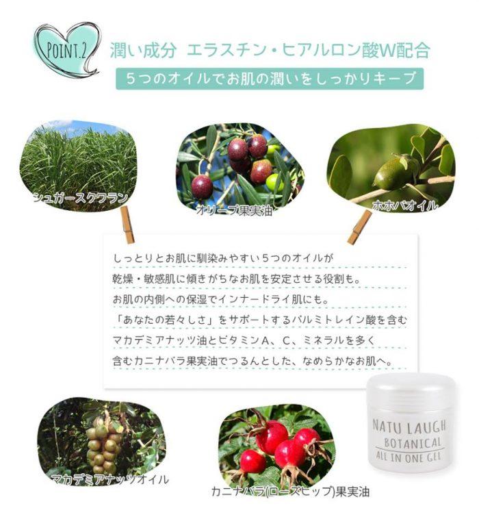Kem dưỡng ẩm Botanical All In One Gel