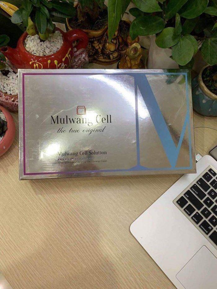 tế bào gốc mulgwang cell solution